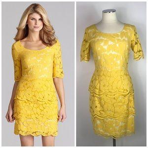 Antonio Melani Yellow Lace Dress Size: 6
